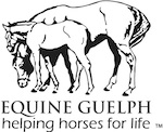 _EquineGuelph_
