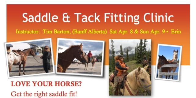 Saddle and Tack Fitting Clinic
