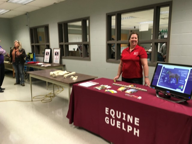 Equine Erin at Erin District High School - Equine Guelph booth